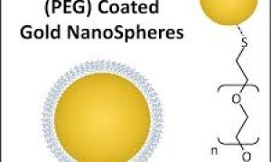 بررسی تاثیر اندازه نانوذرات طلا بر سلولهای اندوتلیال