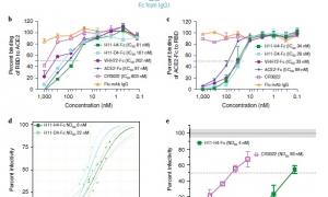 خنثی سازی COVID-19  با استفاده از نانوبادی ها