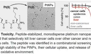 استفاده از نانوذرات پلاتین به عنوان ماده ضد سرطان