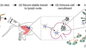 ساخت واکسن مالاریا به کمک فناوری نانو …
