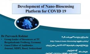 Development of Nano-Biosensing Platform for COVID-19